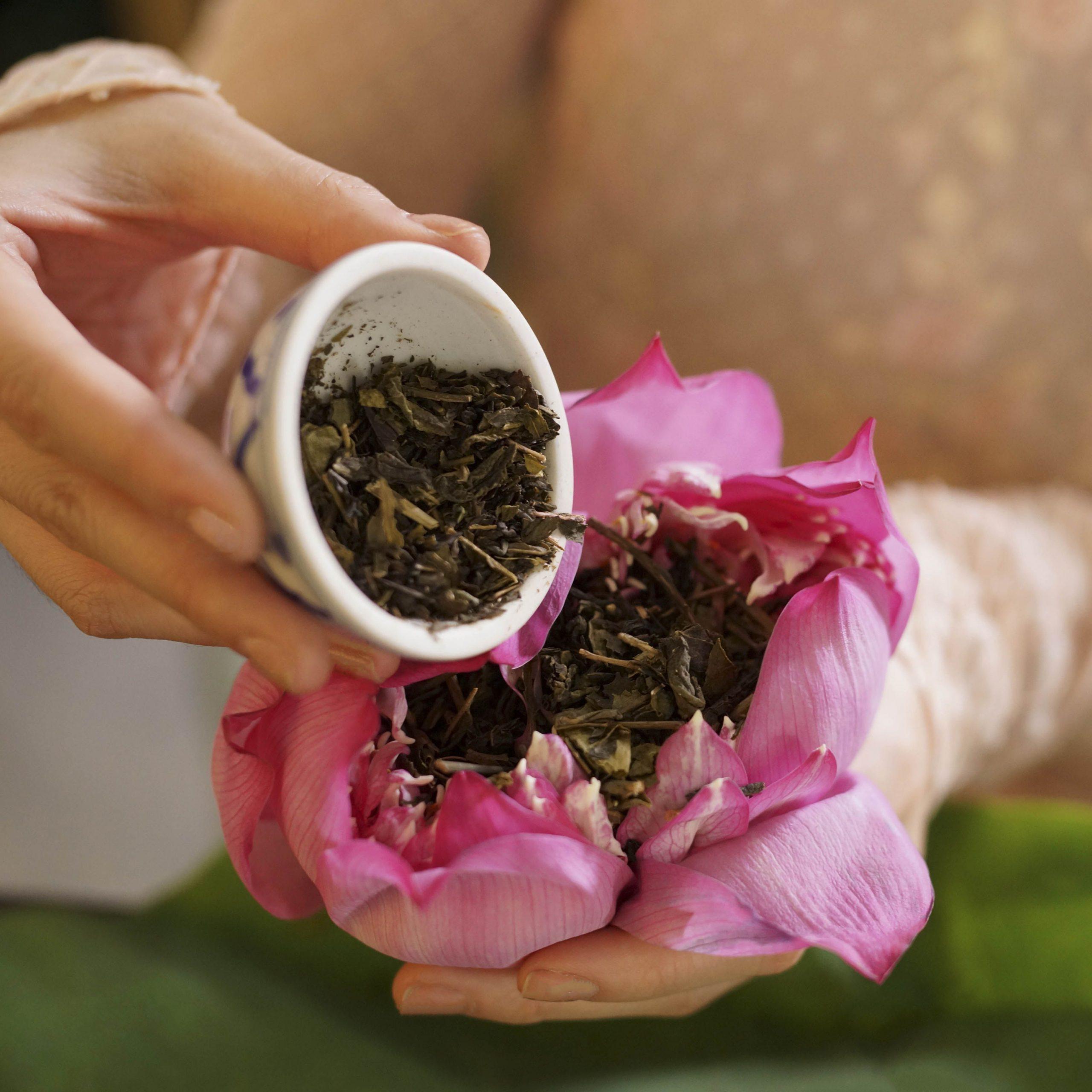 Trà sen muốn có hương vị tốt nhất thì việc đầu tiên cần quan tâm là chọn trà và chọn hoa sen.